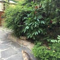 รูปภาพถ่ายที่ Restaurant Izbata โดย Atanas 🐬 เมื่อ 6/16/2017