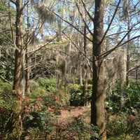 Photo taken at Alligator Bayou by Karen on 2/20/2013