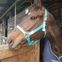 Photo taken at Morven Park Equestrian Center by Heathermichelle G. on 5/9/2017
