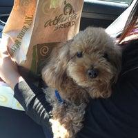 Photo taken at Atlanta Bread Company by Nessa C. on 9/23/2012