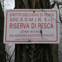 Photo taken at Parco del Ticino (Abbiategrasso) by Domenico on 3/4/2015