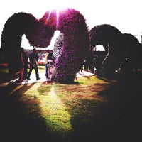 Photo taken at Dubai Miracle Garden by Chica on 4/17/2013