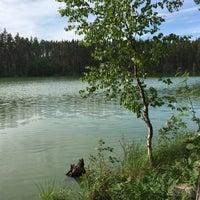 Photo taken at Ольховское озеро by Galina.K N. on 6/26/2016
