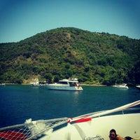 6/23/2013 tarihinde seçil k.ziyaretçi tarafından Poyrazköy'de çekilen fotoğraf