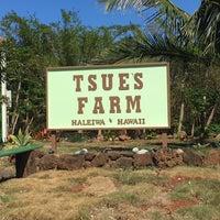 Photo taken at Tsue's Farm by Rebecca on 5/24/2016