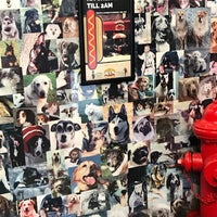 Photo taken at Downtown Dogs by Bill R. on 9/29/2017
