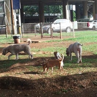 Photo taken at Moanalua Dog Park by Bruce H. on 10/17/2012