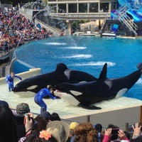 Photo taken at SeaWorld San Diego by Nathalie on 4/22/2013
