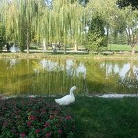 10/6/2012 tarihinde Betül G.ziyaretçi tarafından Soğanlı Botanik Parkı'de çekilen fotoğraf