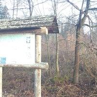 Photo taken at Waldsportpfad Lorch by Markus on 3/9/2013
