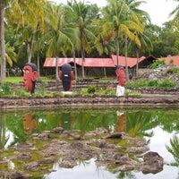 Photo taken at Mimpian Jadi Resort by Bob F. on 11/26/2012