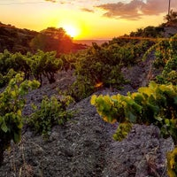 Photo taken at Nuraghe di Nolza by CSWGSardinyawine Export Wine G. on 8/28/2016