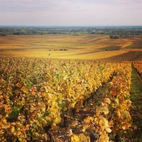 Photo taken at Volnay by L'actu d. on 10/25/2013