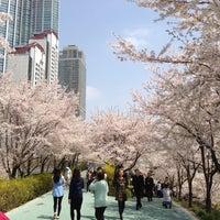 Photo taken at Yangjaechun Trails by dream on 4/17/2013
