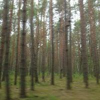 Photo taken at Национальный парк «Орловское полесье» by Евгения on 6/23/2013