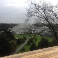 12/27/2012 tarihinde Brian O.ziyaretçi tarafından Royal Botanic Gardens'de çekilen fotoğraf