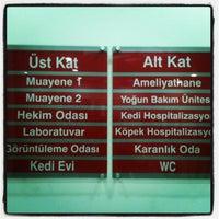 12/28/2012 tarihinde Mustafa B.ziyaretçi tarafından Kuğulu Veteriner Kliniği'de çekilen fotoğraf