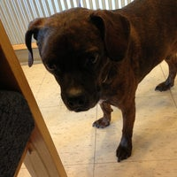 Photo taken at Veterinary Emergency Hospital by Major on 8/11/2013