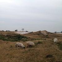 Photo prise au Nationaal Park Drents-Friese Wold par Ritzo t. le12/14/2012