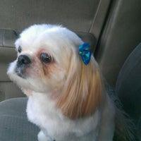 Photo taken at PetSmart by Lauren J. on 9/24/2011
