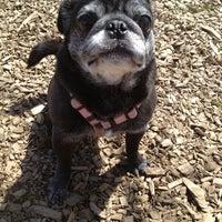 Photo taken at Rowayton Dog Park by Andrea on 3/26/2013
