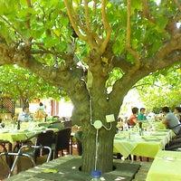 Photo taken at Καλωσόρισμα του Αντώνη by Foteini M. on 7/28/2013