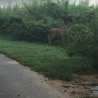 Photo taken at Muddy Creek Greenway by Felicity W. on 8/28/2016