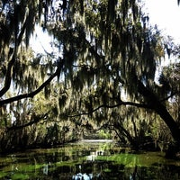 Photo taken at Airboat Tours by Arthur by Miranda S. on 3/19/2014
