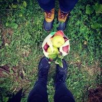 Jenkins-Lueken Orchards