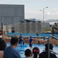 Photo taken at Acquatica - Sea Lion Show by Christian C. on 3/31/2018