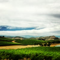 Photo taken at Cuvaison Estate Wines by Mark T. on 8/17/2013