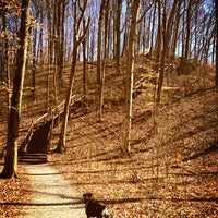 Photo taken at Cincinnati Nature Center (Rowe Woods) by Kimi on 4/4/2013