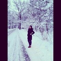 Photo taken at Лес В Бутово by ToriStar on 12/13/2013