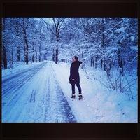 Photo taken at Лес В Бутово by ToriStar on 12/12/2013