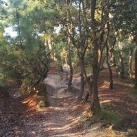 Foto tomada en Bosque De La Primavera por Ernesto M. el 10/14/2012
