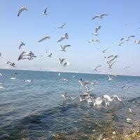 5/2/2013 tarihinde Anılziyaretçi tarafından İnciraltı Sahili'de çekilen fotoğraf