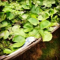 Photo taken at Binh quoi tourist village by Gigi on 12/30/2012