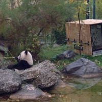 Photo taken at Schönbrunn Zoo by Jeroen J. on 10/27/2012