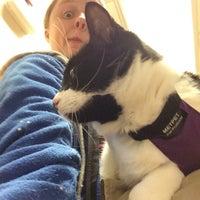 Photo taken at Pet Samaritan Clinic by Star B. on 11/24/2015