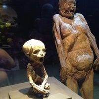 Foto tomada en Museo de las Momias de Guanajuato por Irina el 3/6/2013