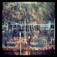 Photo taken at Clancy's Pumpkin Patch by Lia on 10/2/2012