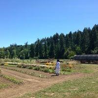 Photo taken at Jim Dandy Farm Market by Rob R. on 7/21/2013