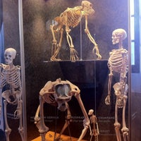 Das Foto wurde bei San Diego Museum of Man von Hayley am 12/30/2012 aufgenommen