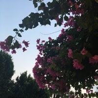 8/18/2017 tarihinde Ece Ezgi E.ziyaretçi tarafından Gocek Lykia Resort Hotel'de çekilen fotoğraf