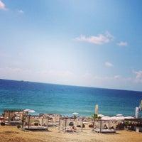 Foto scattata a Palm Beach Club da Gökhan G. il 9/18/2013