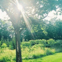 Photo taken at Wilket Creek Park by MlleTravelista on 6/26/2013