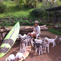 Photo taken at Surfing Goat Dairy by Dania Katz on 9/1/2015