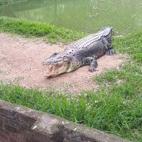 Photo taken at Crocodile Bank by rajesh on 12/21/2014