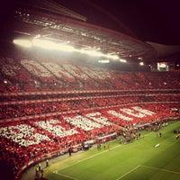 Photo taken at Estádio do Sport Lisboa e Benfica by Valter G. on 1/14/2013