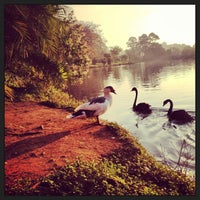 Photo taken at Lago das Garças by Heber d. on 7/16/2013